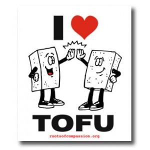 Tanz auf Ruinen Records - Sticker - I love Tofu