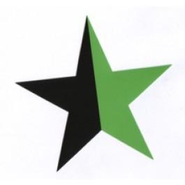 Tanz auf Ruinen Records - Sticker - Stern schwarzgrün