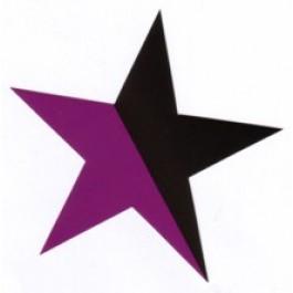 Tanz auf Ruinen Records - Sticker - lila schwarzer Stern