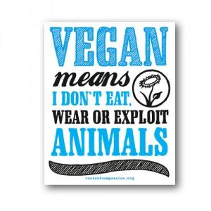 Tanz auf Ruinen Records - Sticker - Vegan means