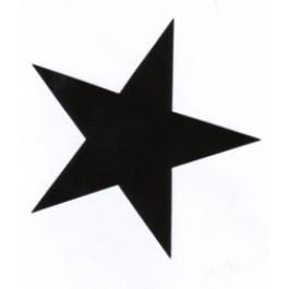 Tanz auf Ruinen Records - Sticker - scharzer Stern