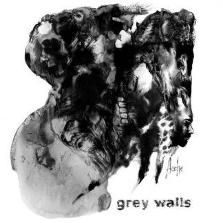 Cover: Tanz-auf-Ruinen-Records-Grey-Walls-Asche