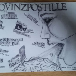 Cover: Provinzpostille #4